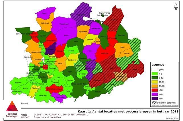 Eikenprocessierups In Opmars Provincie Klaar Om Gemeenten Te